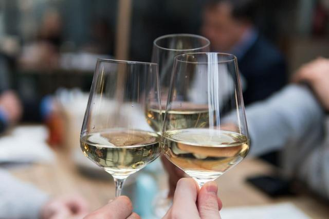 vinhos sul africanos