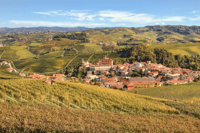 vinícolas Piemonte Itália