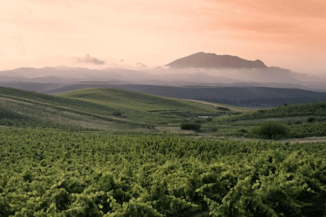 vinícola Sicília Itália