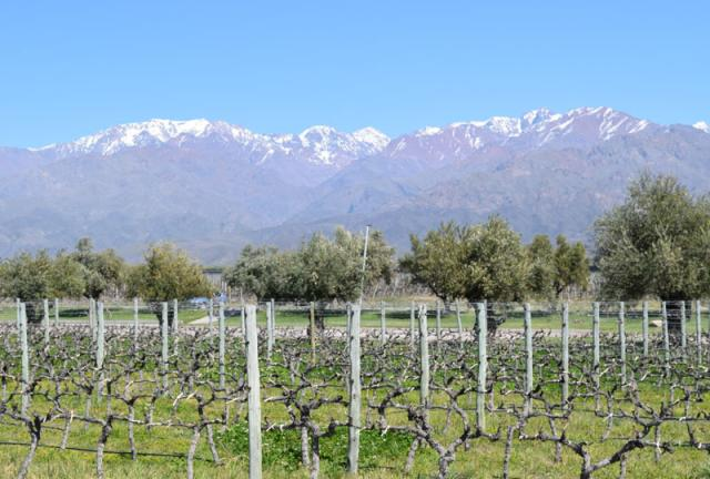 Vale do Uco Mendoza Argentina