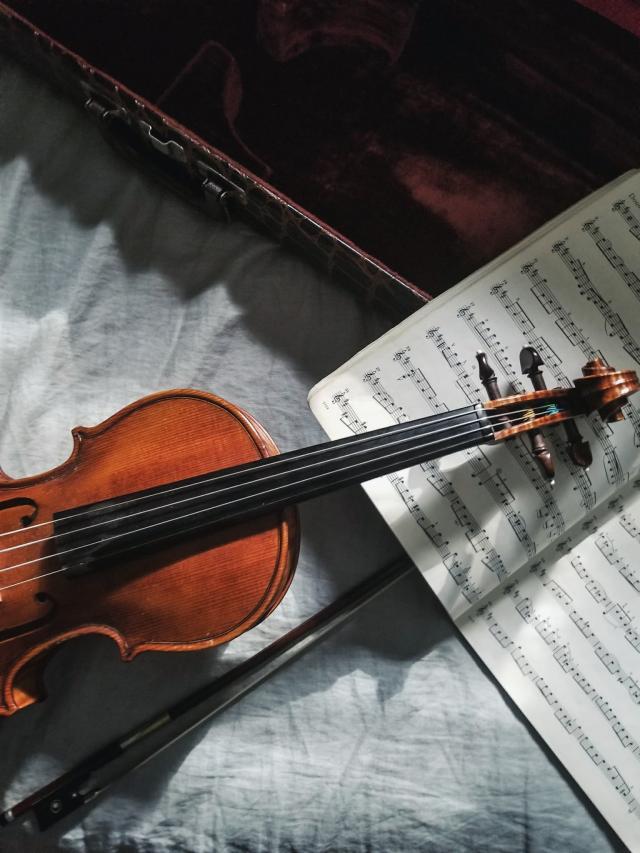 musica classica rio danubio viagem